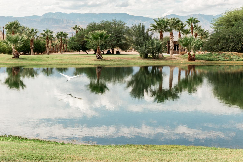 Lake at Desert Ridge Estate wedding in Palm Desert, Cavin Elizabeth Photography