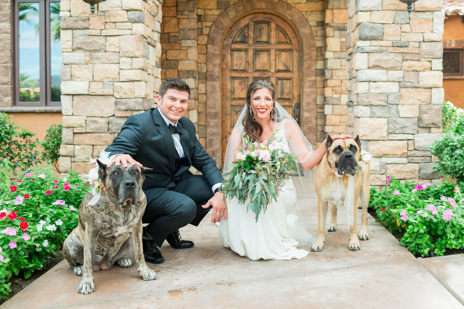 Bride and groom with their dogs wearing flower collars, Cavin Elizabeth Photography