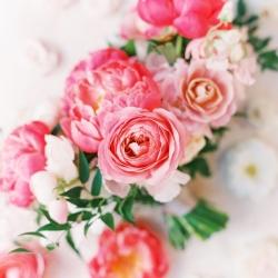 Pink-Miramonte-Resort-Wedding-in-Palm-Desert-6
