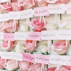 Pink-Miramonte-Resort-Wedding-in-Palm-Desert-72