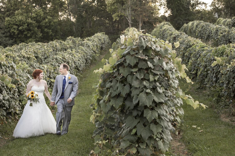wine tasting for weddings, Wedding Photographer in Temecula