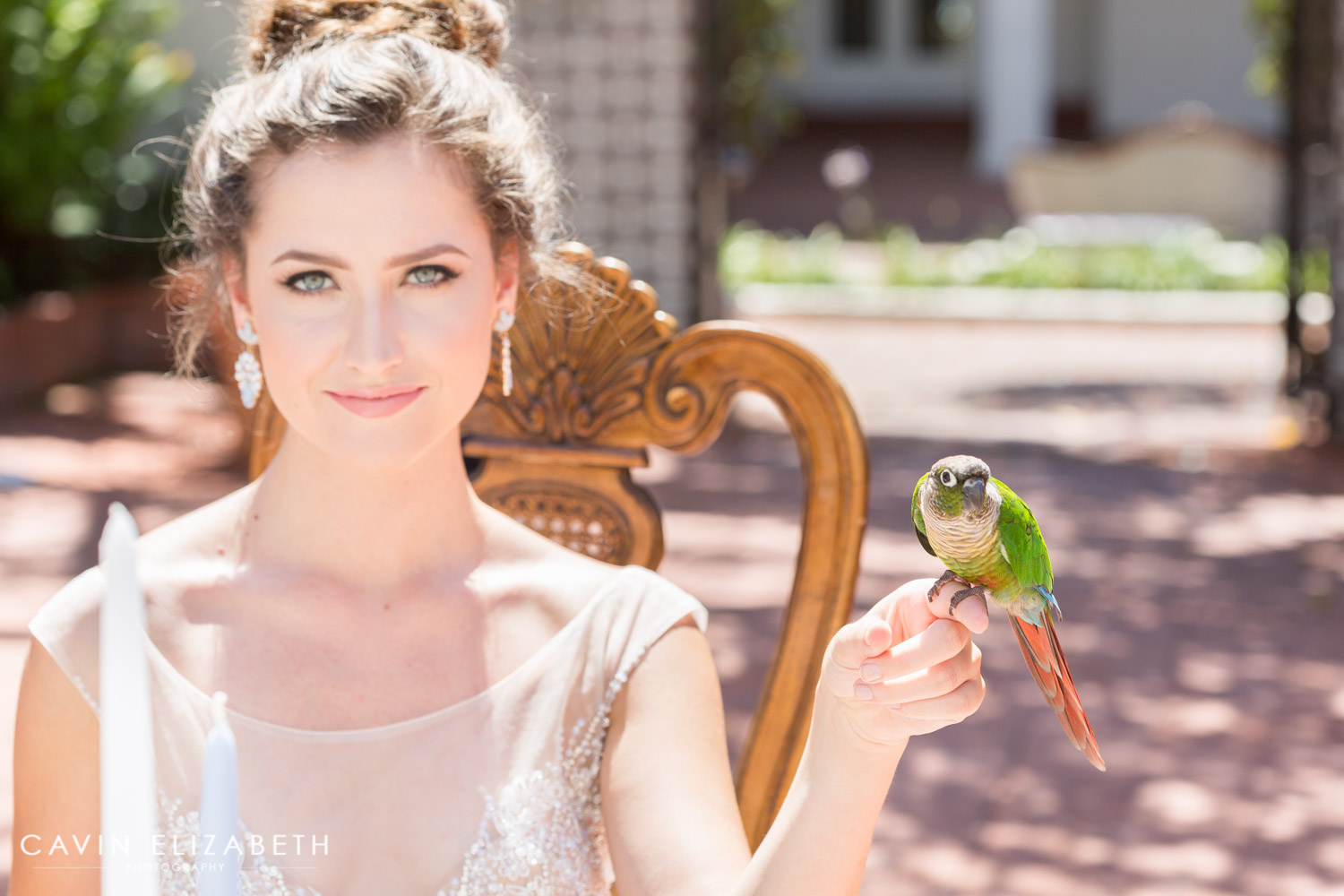 bride and a parrot at a darlington house wedding