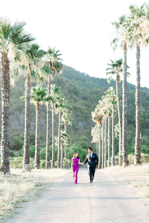 Formal + Chic San Diego Epic Landscape Engagement Photos