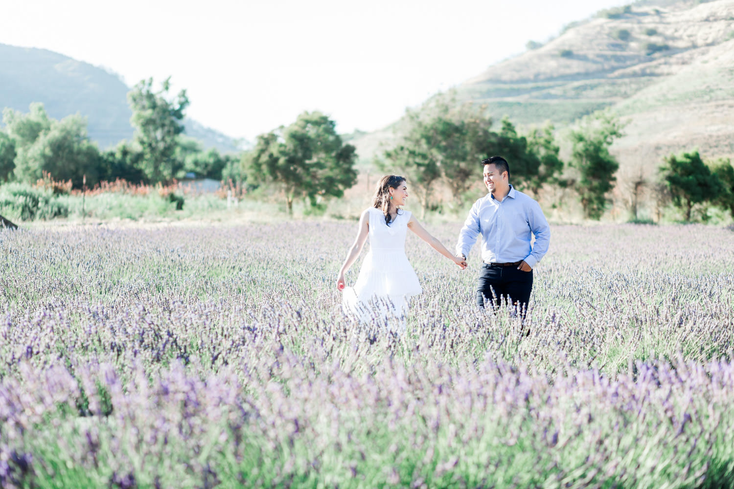 Formal + Chic San Diego Lavender Field Engagement Photos