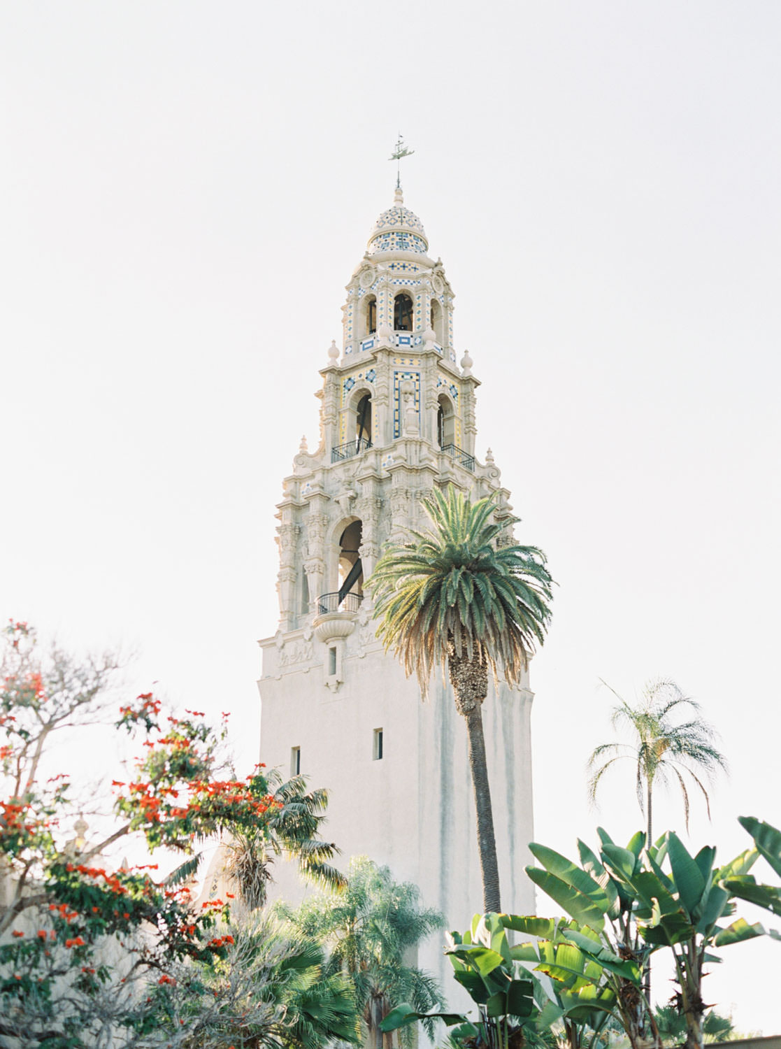 Engagement Photos in Balboa Park