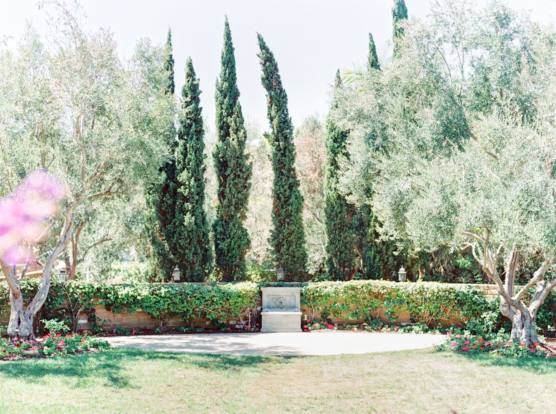Olive Lawn at Estancia La Jolla Wedding Venue - San Diego Film Photographer Cavin Elizabeth Photography
