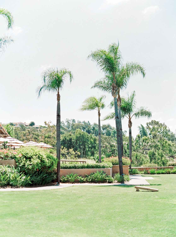 Weddings at Rancho Valencia on the Croquet Lawn, Cavin Elizabeth Photography - San Diego film photographer