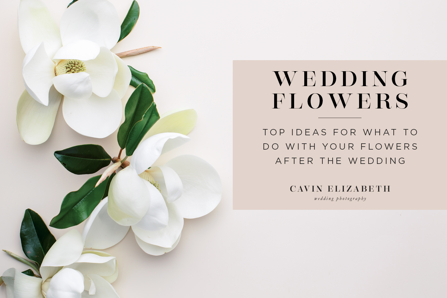 What To Do With Wedding Flowers After Your Wedding, ideas for how to donate or reuse your wedding flowers