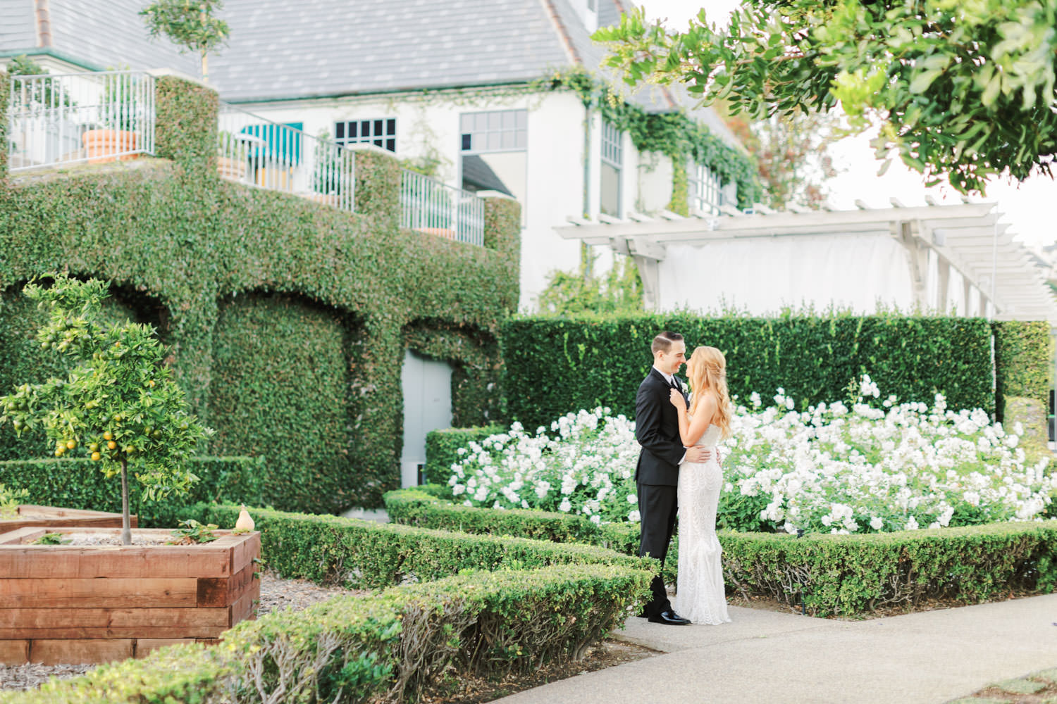 Bride and groom in a rose garden in front of an ivy-covered building. Bride wearing a Galia Lahav Gala gown with a sweetheart neckline. Del Mar Country Club Wedding by Cavin Elizabeth Photography