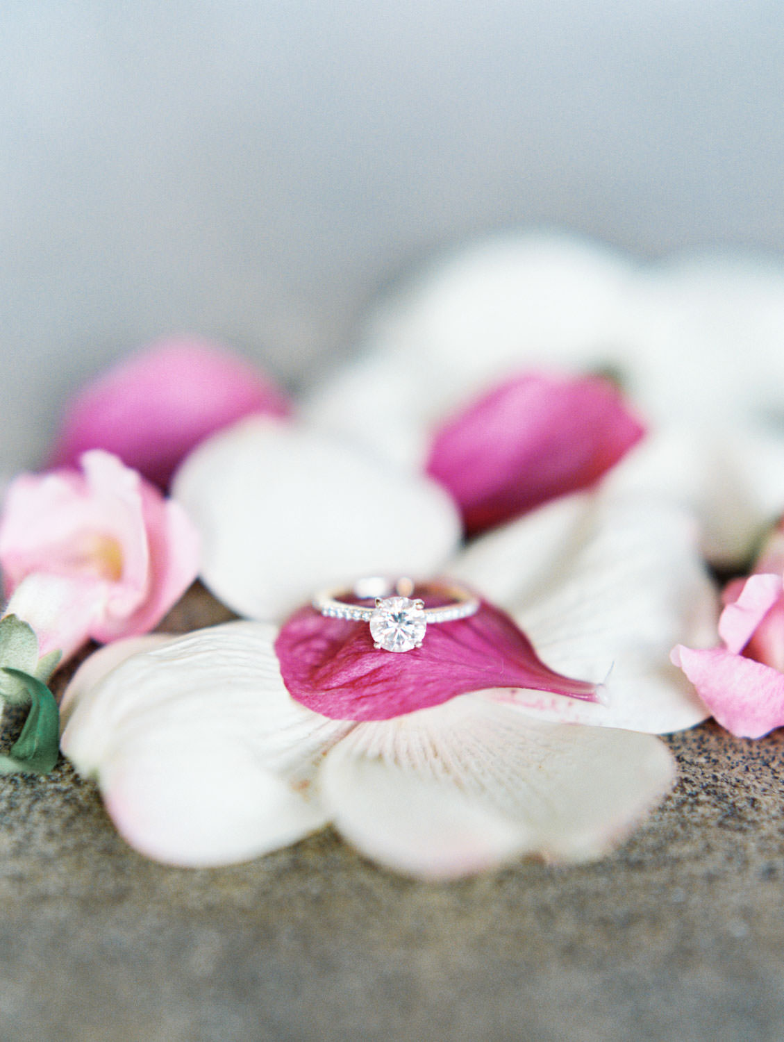Solitaire diamond engagement ring with flowers. Engagement Photos on film at San Francisco City Hall by Cavin Elizabeth