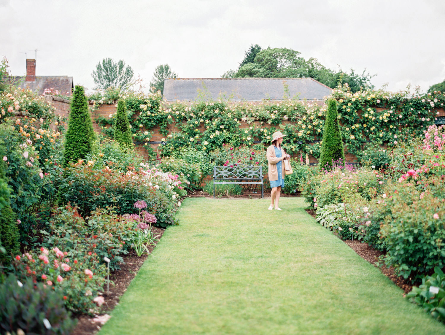 Lion garden at David Austin Roses in England. Film by Cavin Elizabeth on the Flutter Mag Retreat