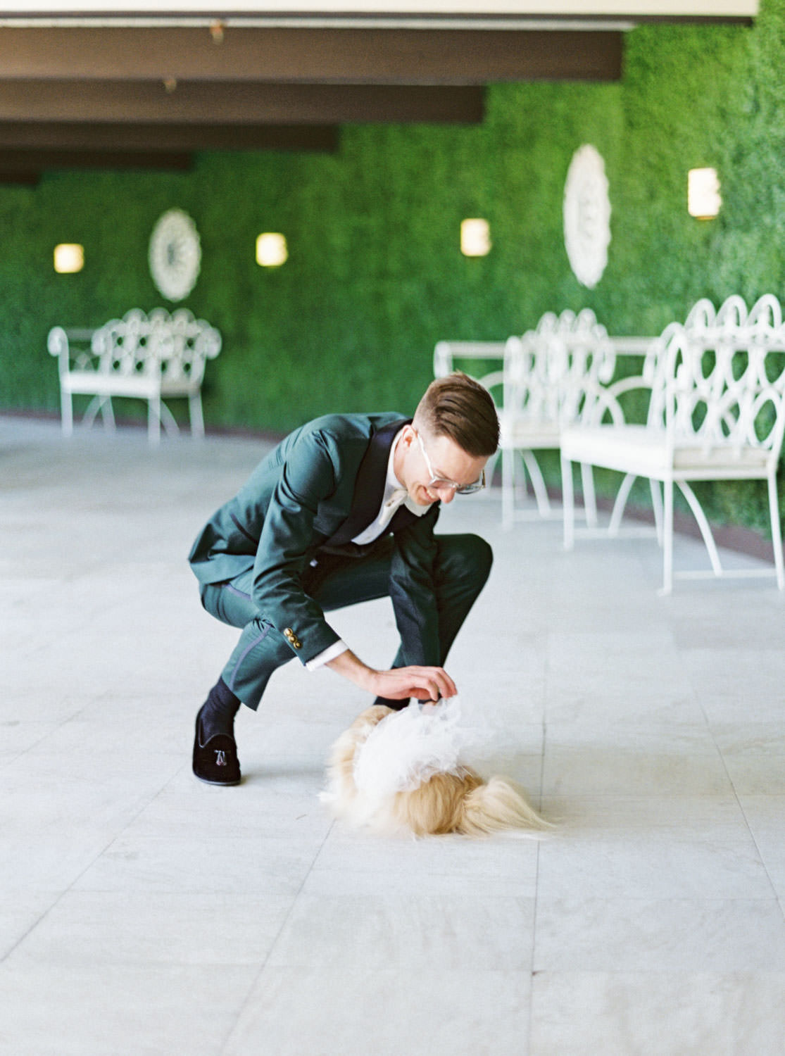 Groom in dark teal tuxedo during on the first look with his Pomeranian as a surprise instead of the bride. Cavin Elizabeth Photography