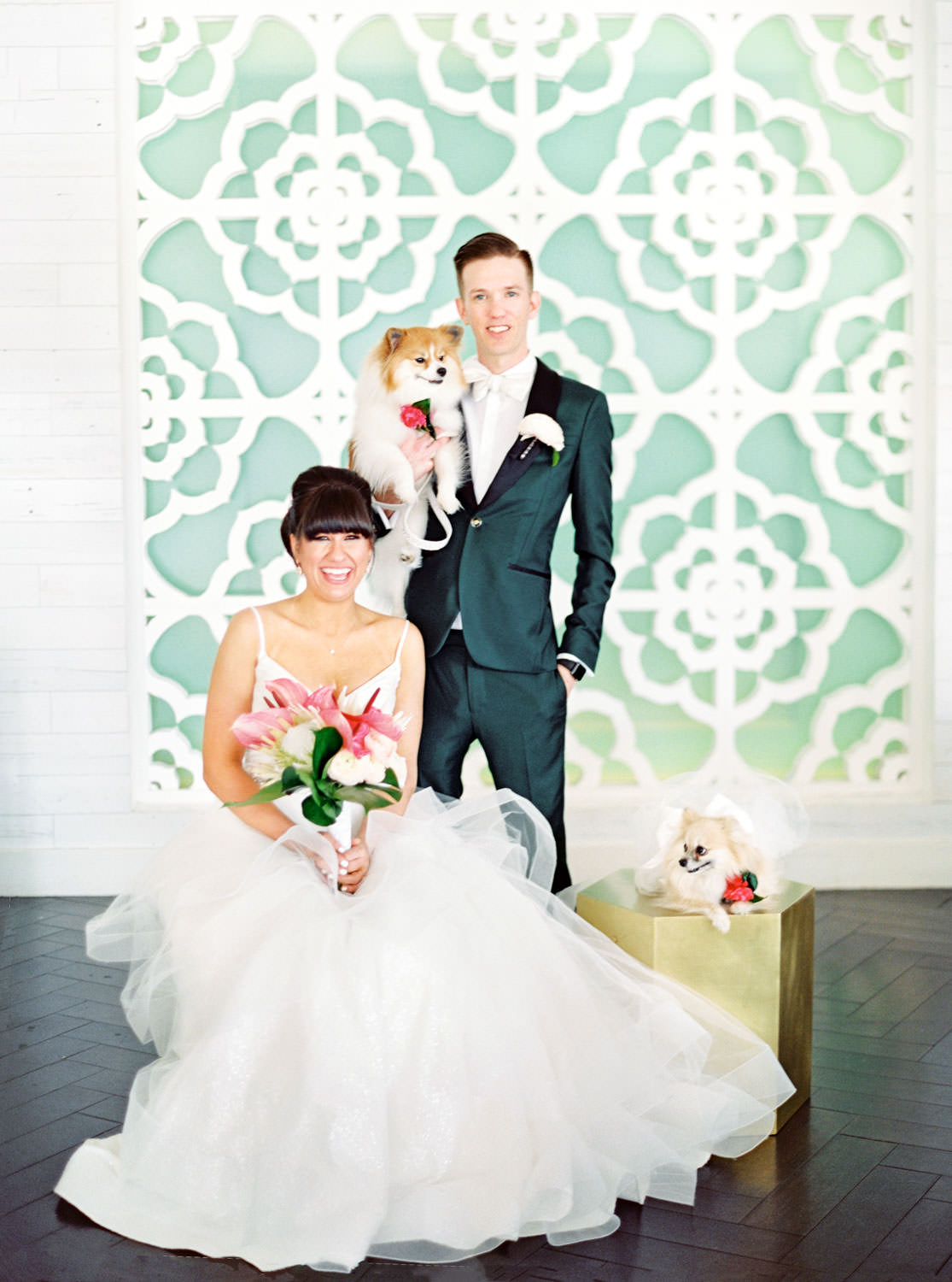 Bride in beehive updo wearing a Matthew Christopher gown sitting next to Pomeranian in a wedding tutu on a gold platform and groom wearing a dark teal tux holding another Pomeranian inside the colorful Riviera Palm Springs lobby. Bridal bouquet with protea, pink anthurium, and palm leaves. Cavin Elizabeth Photography