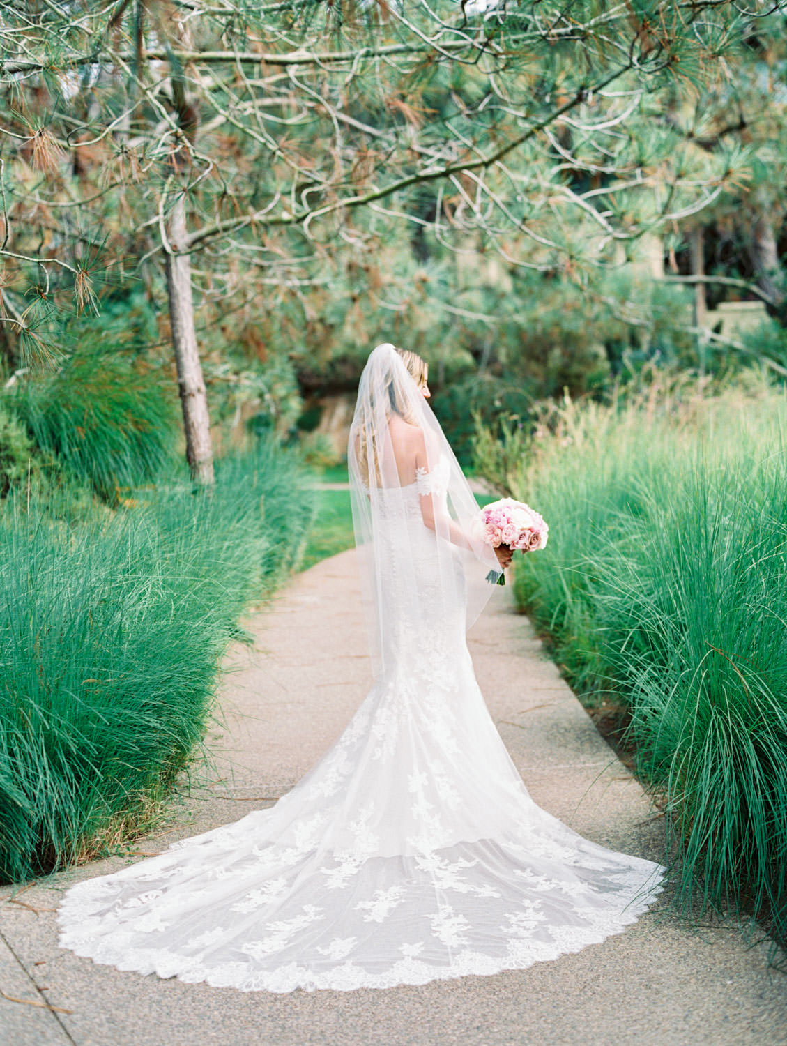 Bride in Pronovias off shoulder lace gown and long train, classic bridal portrait, Lodge at Torrey Pines wedding, film photography by Cavin Elizabeth Photography