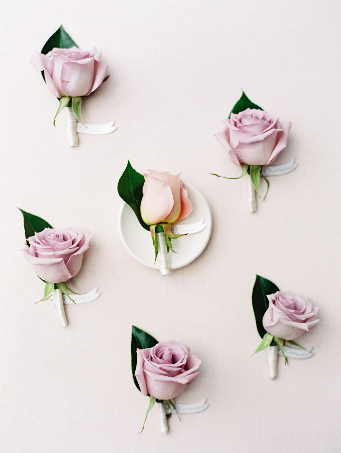 Blush peach rose boutonniere for the groom and lavender rose boutonnieres for groomsmen, film photography by Cavin Elizabeth Photography