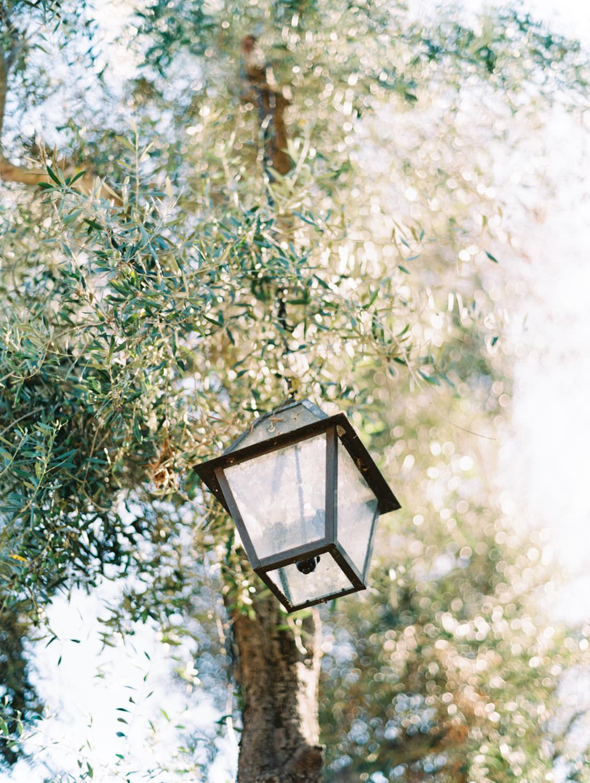 Lantern hanging from a tree. Wedding at Rancho Bernardo Inn. Film photo by Cavin Elizabeth Photography