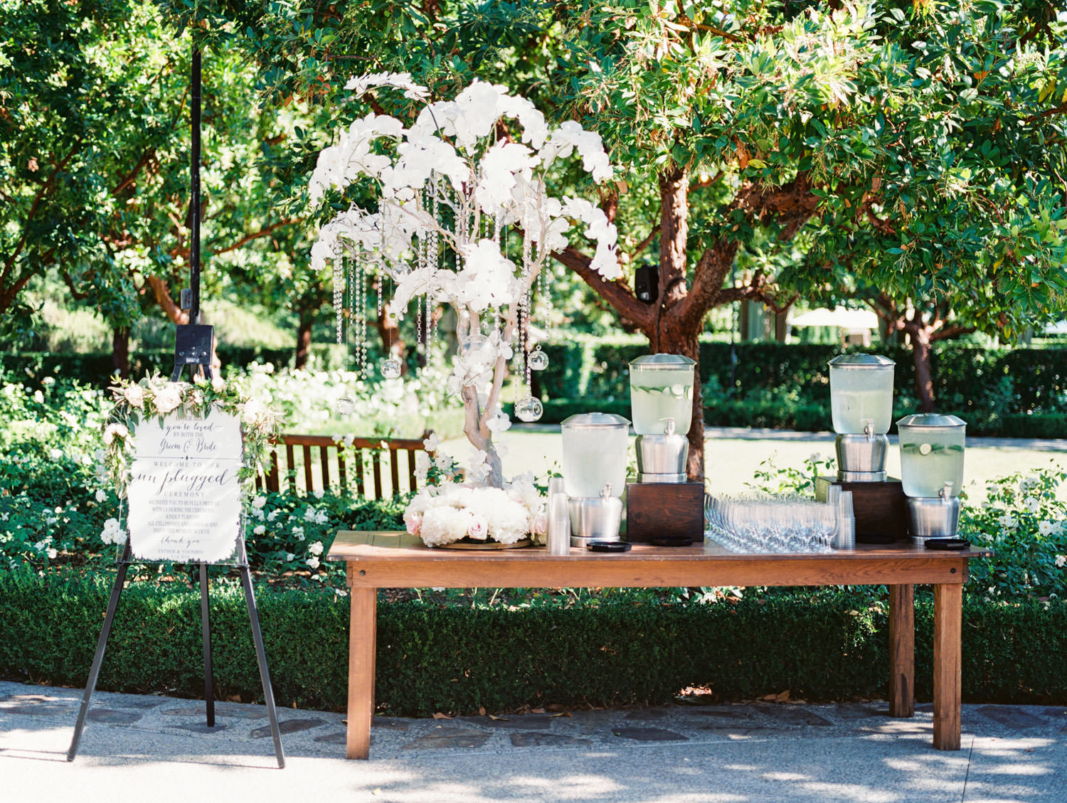 Wedding refreshment table with flavored water station and large tree covered in white orchids and an unplugged ceremony sign. Rancho Bernardo Inn Aragon lawn wedding ceremony. Film photo by Cavin Elizabeth Photography