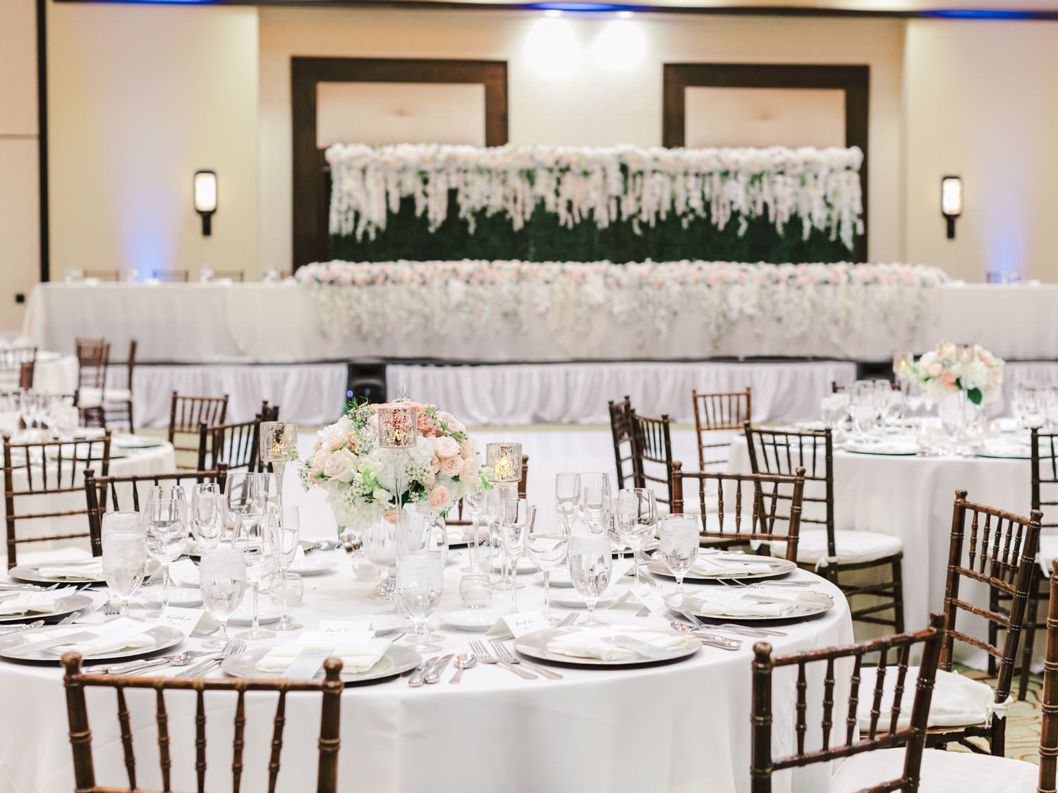 Reception with white linens, oak Chiavari chairs, and ivory, blush, and green centerpieces. Head table on a stage with a greenery wall backdrop. Wedding at Rancho Bernardo Inn in the Aragon Ballroom. photo by Cavin Elizabeth Photography