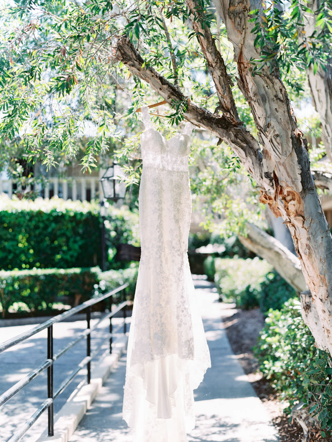 Martina Liana gown from The White Flower Bridal Boutique hanging from a tree. Wedding at Rancho Bernardo Inn. Film photo by Cavin Elizabeth Photography
