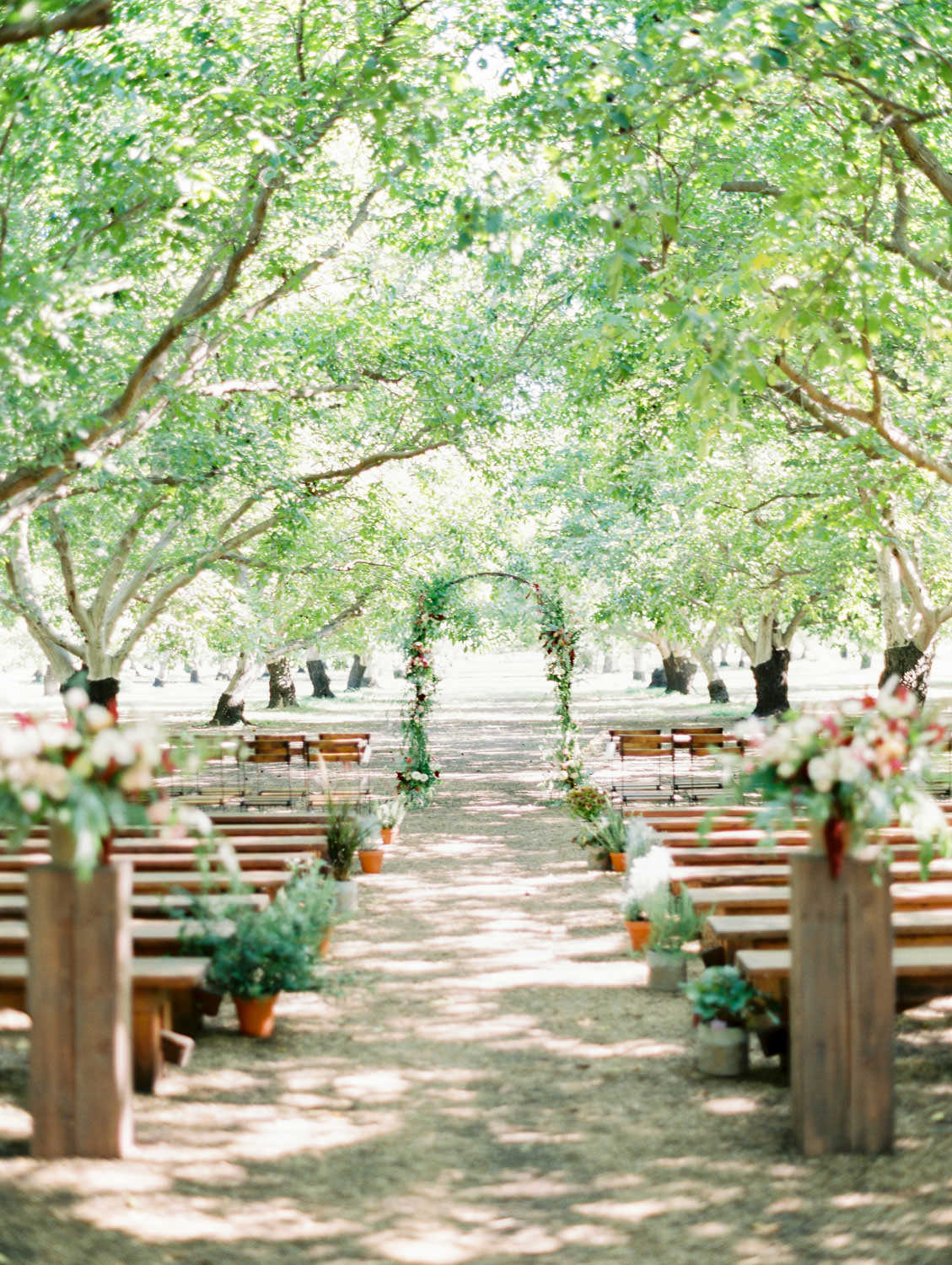 Ceremony in a forest with benches for seating and organic greenery and plants down the aisle. Full Belly Farm ceremony on Martha Stewart Weddings by film photographer Cavin Elizabeth Photography