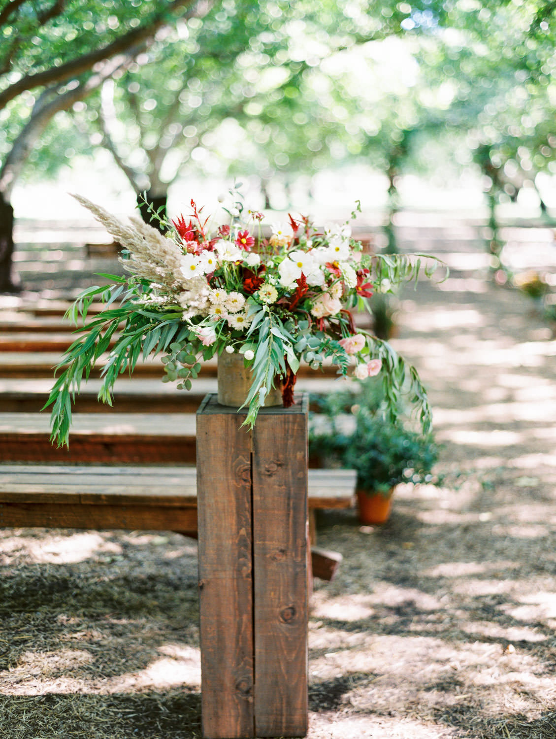 Ceremony in a forest with benches for seating and aisle arrangement of greenery, ivory, wine, and blush flowers. Full Belly Farm ceremony on Martha Stewart Weddings by film photographer Cavin Elizabeth Photography