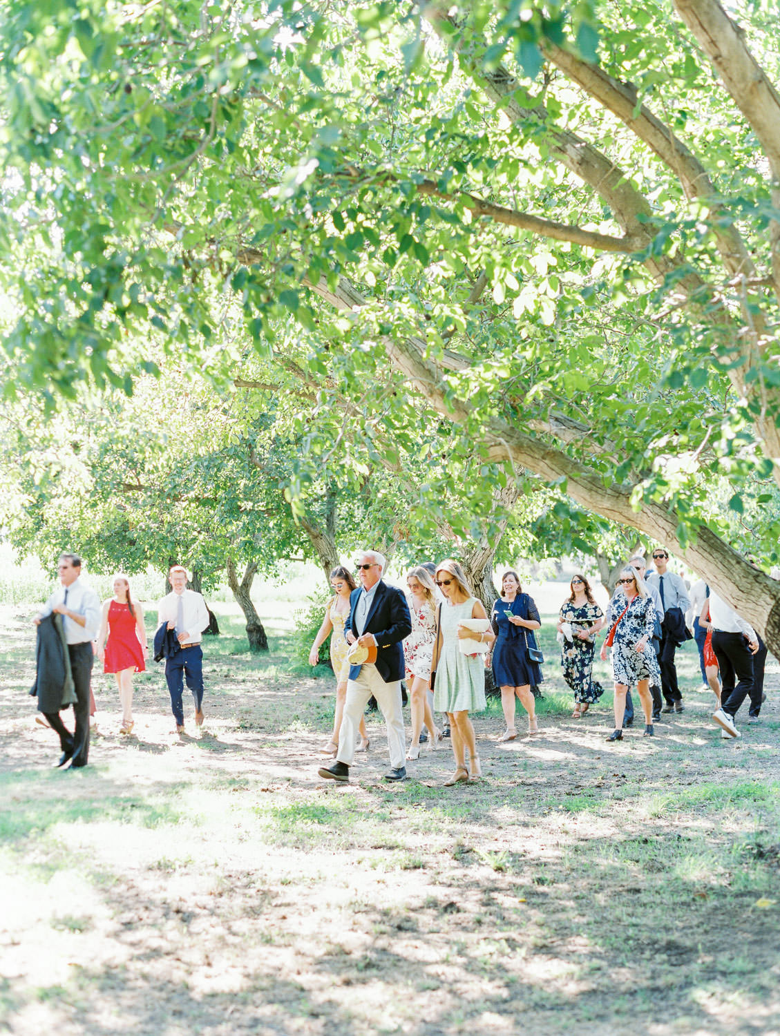Guests walking through a forest to get to the ceremony. Full Belly Farm ceremony on Martha Stewart Weddings by film photographer Cavin Elizabeth Photography