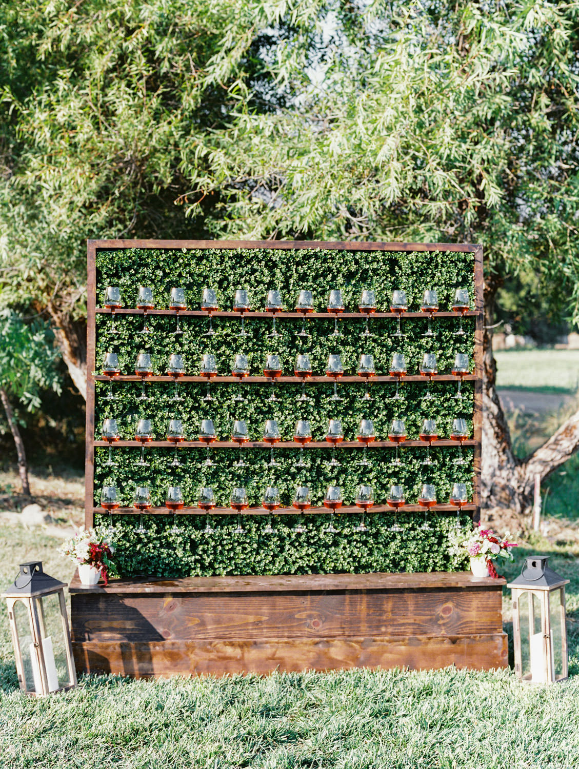 Wooden shelving for rose glasses in front of a greenery hedge backdrop. Full Belly Farm reception by film photographer Cavin Elizabeth Photography