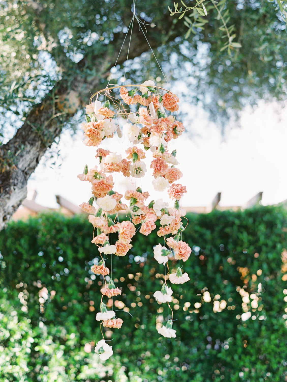 Large tree with hanging floral arrangements of peach and ivory carnations. Miramonte Resort ceremony on Miramonte Green. Film photography by Cavin Elizabeth.