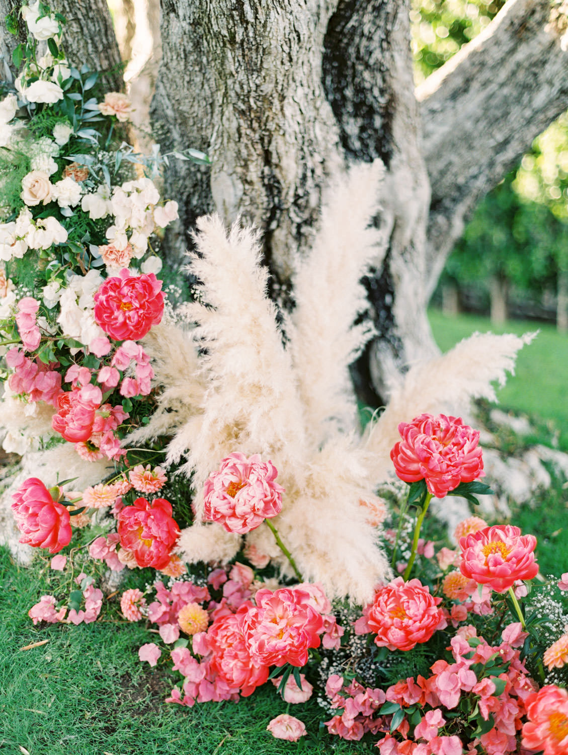Large tree with hanging floral arrangements and pink peonies and pampas grass spiraling up the trunk. Miramonte Resort ceremony on Miramonte Green. Film photography by Cavin Elizabeth.
