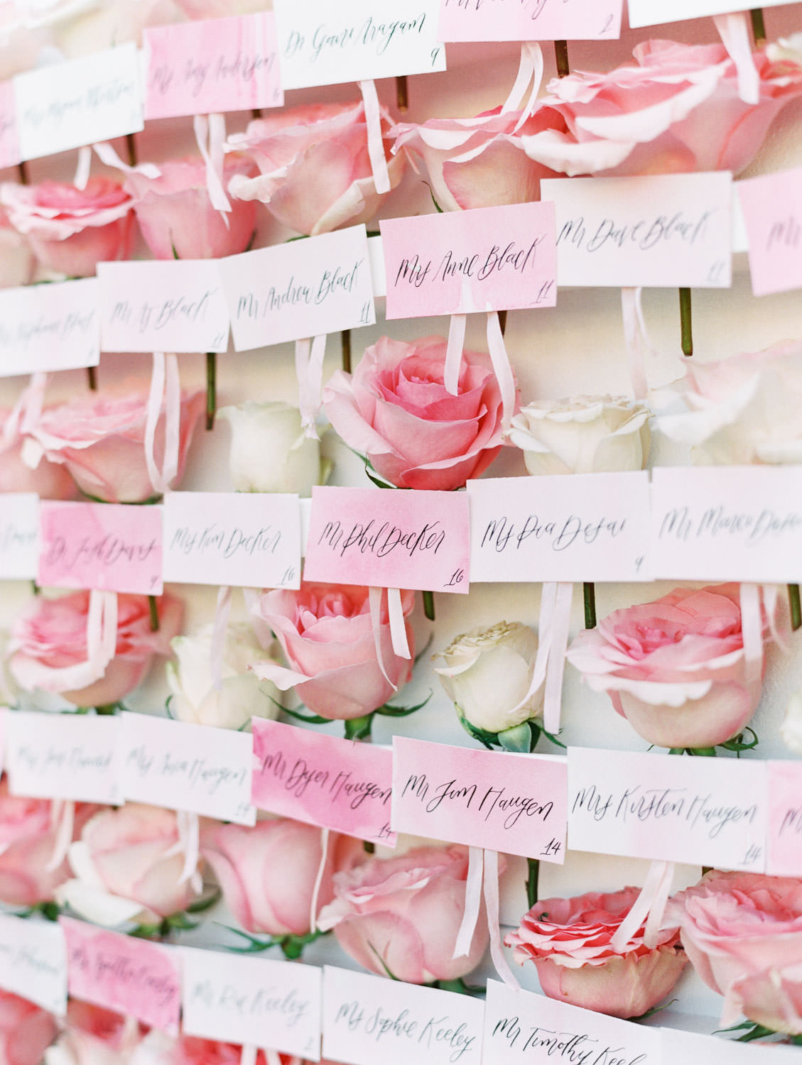 White escort display with each guest's escort card comes with a pink rose to pick off of the wall. Miramonte Resort wedding. Film photography by Cavin Elizabeth.