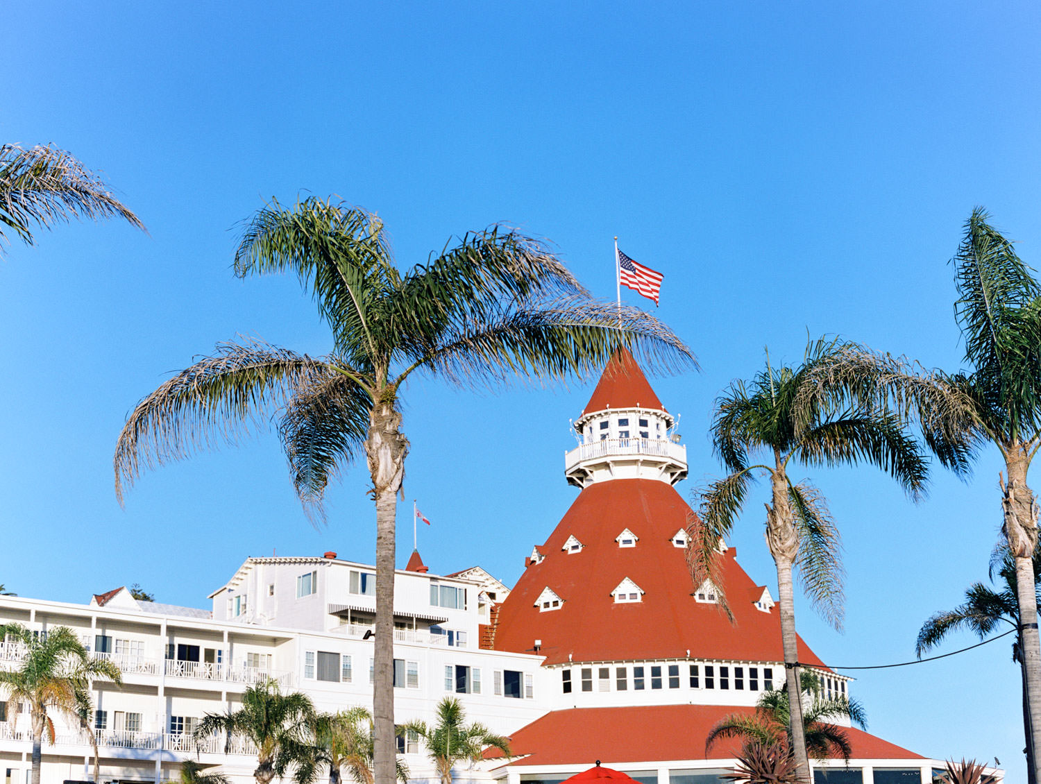 Iconic view of the Del and palm trees. Hotel Del Coronado Wedding on film by Cavin Elizabeth.