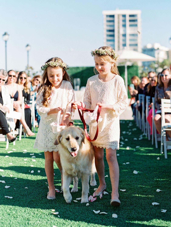 Flower girls in ivory lace dresses and flower crowns walking dog down the aisle. Hotel Del Coronado wedding on film by Cavin Elizabeth.
